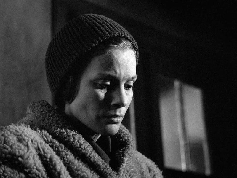 Bergman-Winter-Light