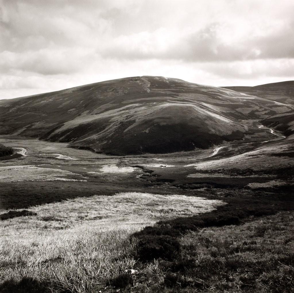 The Vino from Duffdefiance, Glen Buchat 1980